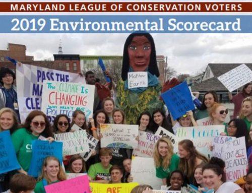 ¡El Cuadro de mando ambiental 2019 ya está aquí!