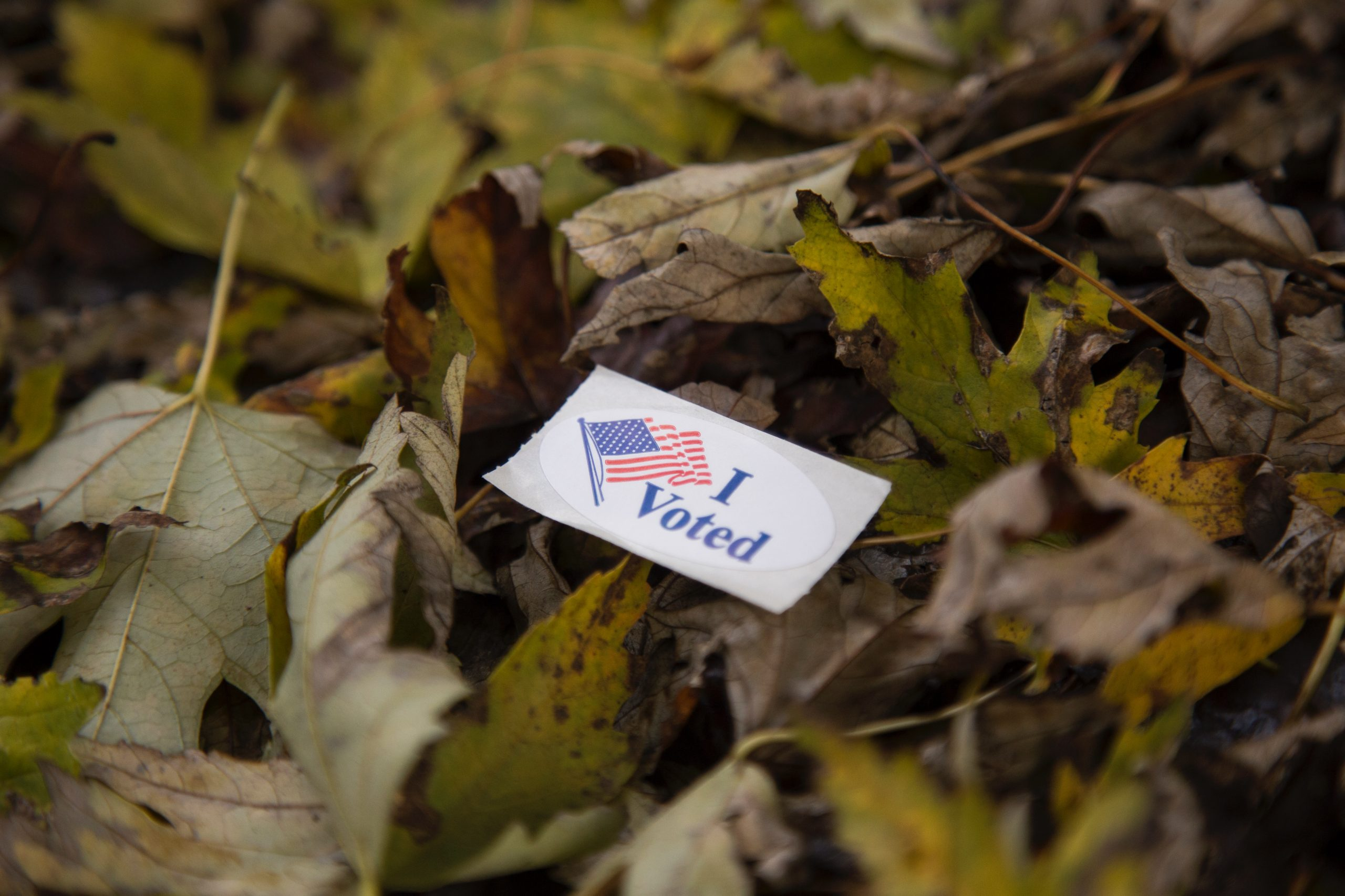 "An ""I voted"" sticker on a pile of leaves"