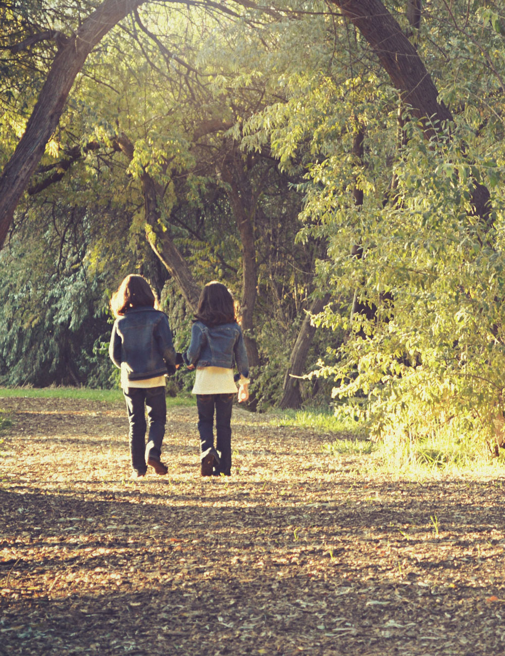 Two children walking along a wooded path