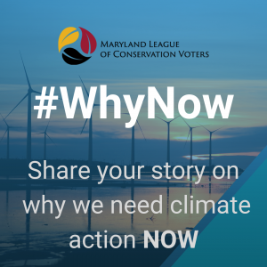 Why Now- Share your story on why we need climate action now